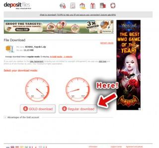 download_depositfile_en02