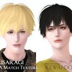 KEWAI-DOU_KisaragiEA