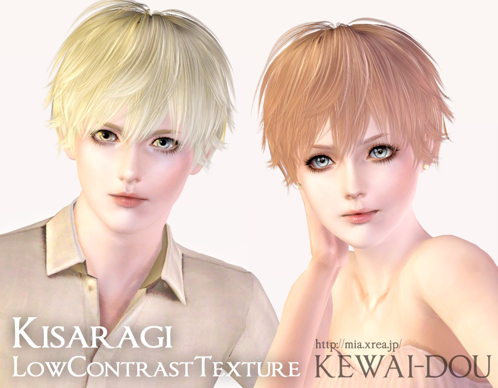 Kisaragi (Hair for The Sims3) | KEWAI-DOU