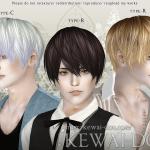 KEWAI-DOU Sims3 Riccio hair for maleKEWAI-DOU ザ・シムズ3 髪型「Riccio」男性用