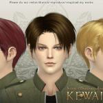 KEWAI-DOU_TS4Levi_main
